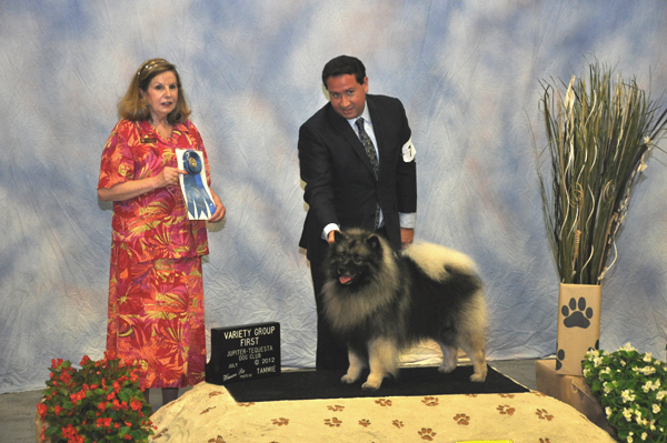 All-Breed Dog Show At The Fairgrounds