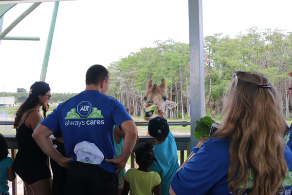 Grandma's Place Kids Visit Lion Country