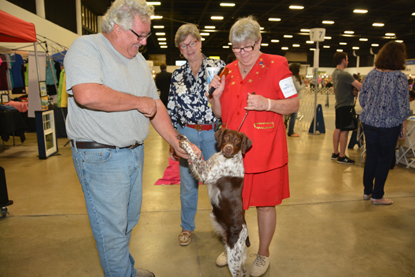 All Breed Dog Shows At The Fairgrounds