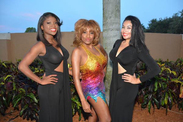 Wellington Tina Turner Tribute Concert