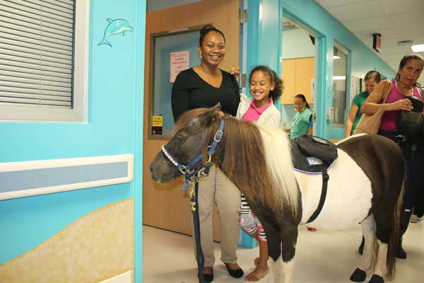 Therapeutic Ponies Visit P.W. Hospital