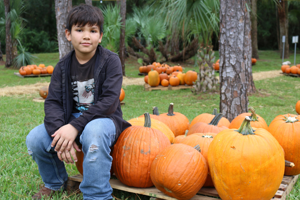 Community Of Hope Pumpkin Patch