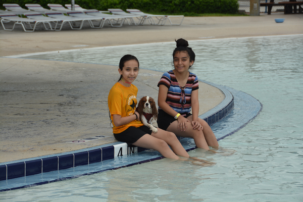 Fun For Dogs At Calypso Bay Waterpark