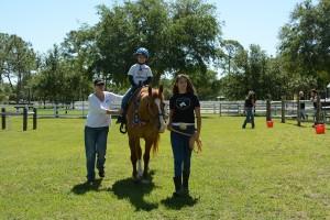Horses Help (06)