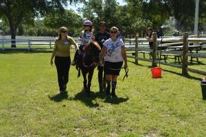 Horses Help (08)