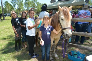 Horses Help (20)