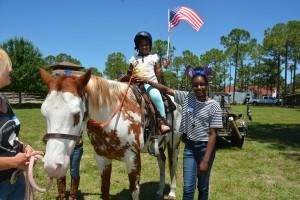 Horses Help (21)