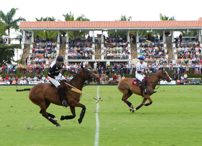 The Palm Beach County Convention Visitors Bureau This Week Recognized International Polo Club