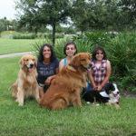 RPB Dogs (1)