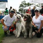 RPB Dogs (3)