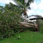 Irma RPB (15)