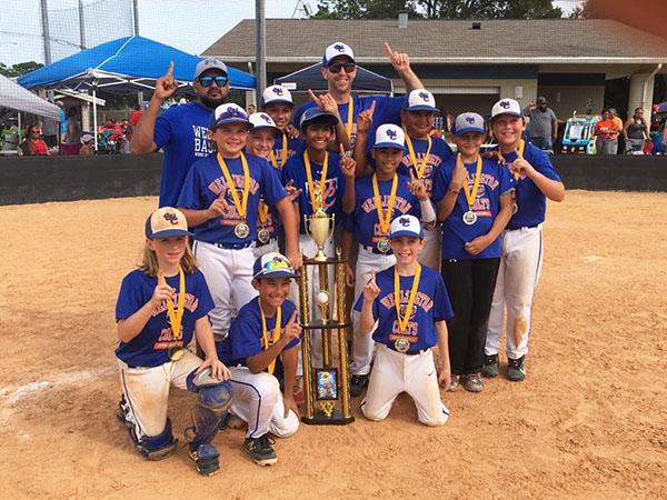 Colts Win Baseball Tournament In New Smyrna Beach Town Crier Newspaper